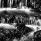 Fern Falls in B&amp;W by   Paul W. Faust