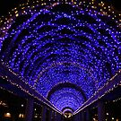 Blue Light Arbor by Jane McDougall