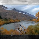 Shotover River 1 by Karen Lewis