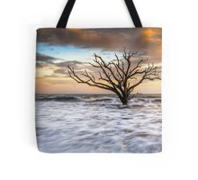 Botany Bay Edisto Island SC Boneyard Beach Sunset Tote Bag