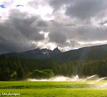 Watering the lowland by Erika Price