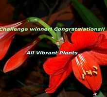 Challenge win banner All Vibrant Plants by ♥⊱ B. Randi Bailey