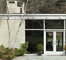 Mid Century Modern Architect Houses, New Canaan  by Jane McDougall