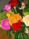 Rainbow Of Roses by Sammy Nuttall