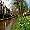 Once again it is spring in Utrecht by jchanders