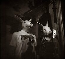 { the bunnies } by Lucia Fischer