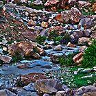 Waterway HDR by Omar Dakhane