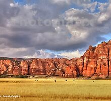 Herd among the arches by Erika Price