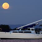 Moon over Pumicestone Passage by Barbara Burkhardt