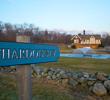 This Way to Chardonnay by Aaron Poach