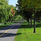 Rene-Levesque park by Debellez
