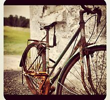Gracefully Aging Retired Bicycle by Catherine C.  Turner
