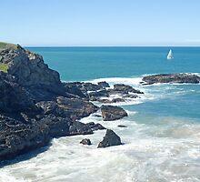 McCauleys Headland, Coffs Harbour Regional Park, NSW by Adrian Paul