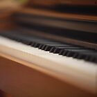 piano keys by mrivserg
