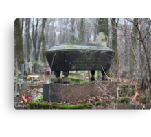 old coffin Canvas Print