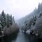 Snow On The Upper McKenzie River by Charles &amp; Patricia   Harkins ~ Picture Oregon