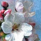 Asian Cherry Blossoms Oil Painting 2 by Fred Seghetti