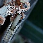 Ice Lock by Ashley Ellis
