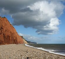 Jurassic Coast, Sidmouth by Tony Steel
