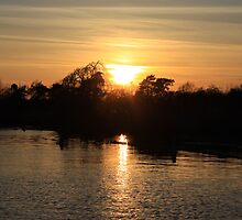 Horning Sunset by perrycass