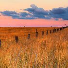 Rabbit Proof Fence by marcpayne