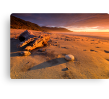 Days Like These Canvas Print