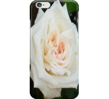 White Rose With Natural Garden Background iPhone Case/Skin