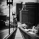 Walking to Knoxville by ©  Paul W. Faust
