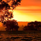 Summer Sunset by Michelle  Wrighton