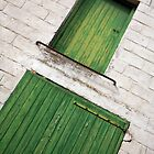 Green Shutters at Tournehem by Liz Garnett