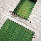 Green Shutters at Tournehem by Liz Garnett