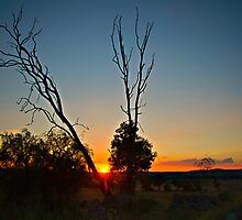 Last Rays Before Night by bazcelt