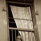 Face in the Window by Valerie Rosen