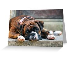Happiness to a dog, lies on the other side of the door. Greeting Card