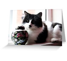 Morrisey the cat Greeting Card