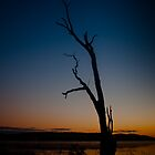 A new day rising - Wagga Wagga by naemick