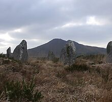 Drombohilly Stone Circle by Michael Mitchell