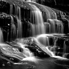 Tennessee Falls - BW by ©  Paul W. Faust