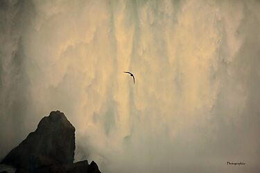 Soaring Through the Downpour (Niagara Falls) by Yannik Hay