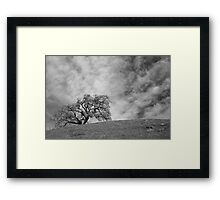 Without Him Framed Print