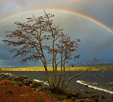 Rainbow Over Ness by Simon Kirwin