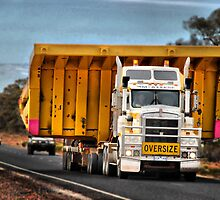 OVERSIZE - To state the obvious - MOVE by Andrew Prince