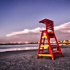 The Lookout by CollinScott