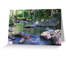 a creek in the valley ... Greeting Card