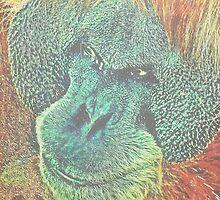 Dreaming Apes (Affen sind sie, die davon träumen, Mensch zu sein) by heinrich