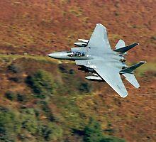 USAF F-15 by Stephen Kane