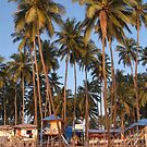 Palm Lined Beach Palolem by SerenaB