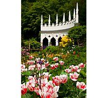 Rococo Spring Photographic Print