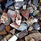 Rock Garden by marilyn diaz