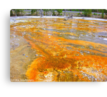 Painting the ground Canvas Print